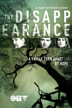 The Disappearance (2017 TV series) poster