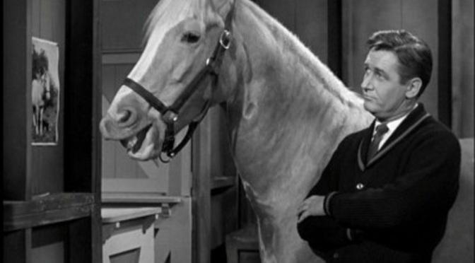 'Mister Ed' (Season 1): Classic 60s sitcom still delivers the funny