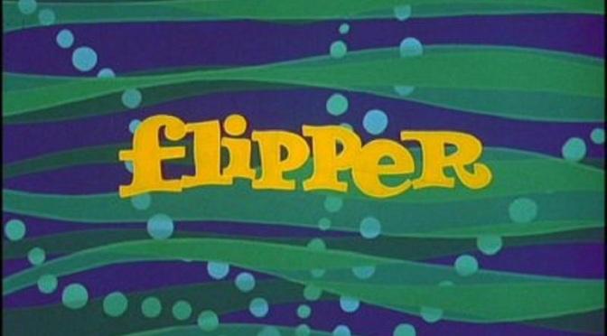 'Flipper' (Season 1): '60s favorite still loaded with family-friendly adventure
